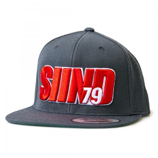 Cap SIIND79 3d grey/red